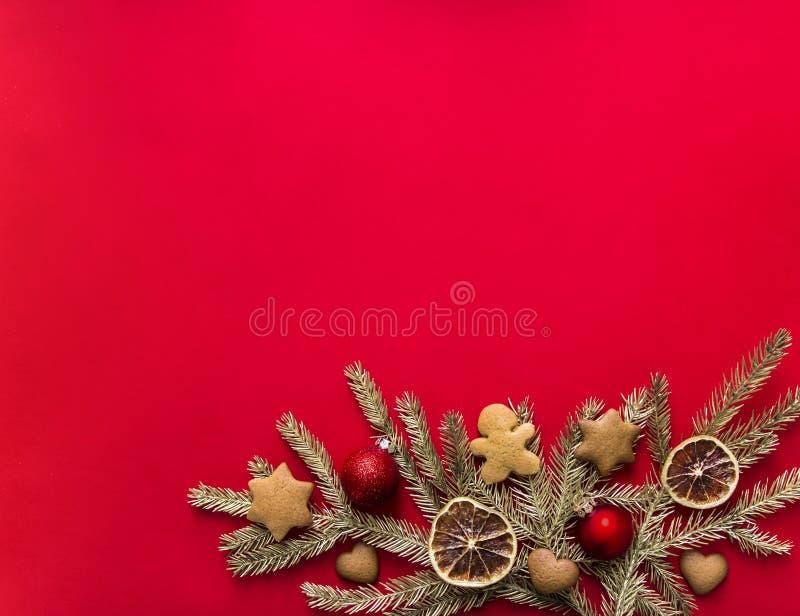 在金云杉分支红色背景装饰用姜饼加香料桔子和球 库存照片