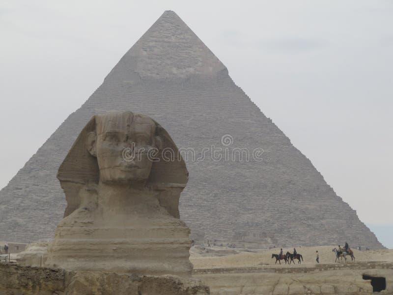 在金字塔前面的狮身人面象在埃及 吉萨棉金字塔复合体 免版税图库摄影