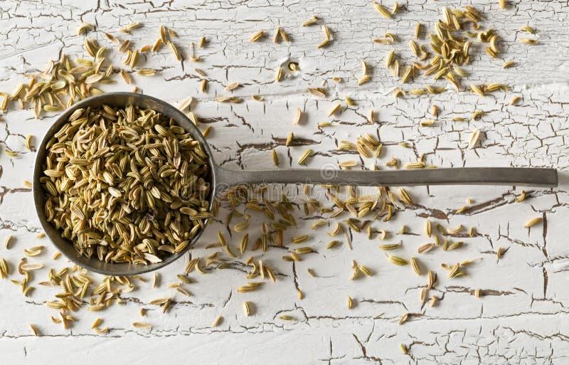 在金属匙子的干茴香籽在土气白色木桌背景顶视图平的位置 库存照片