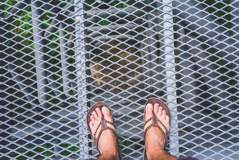 在金属天空的Man's脚在森林里走在chiangmai 免版税库存照片