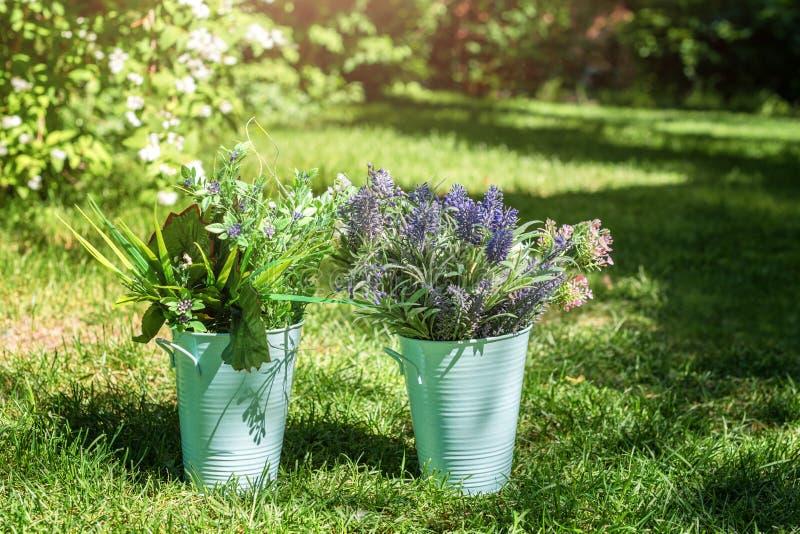 在金属桶的各种各样的鲜花安排在庭院里 欢乐事件的装饰花束 库存照片