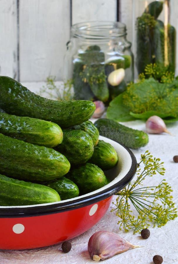在金属碗的新鲜的黄瓜 做保护由有机蔬菜在轻的背景 自创有机绿色腌汁 图库摄影