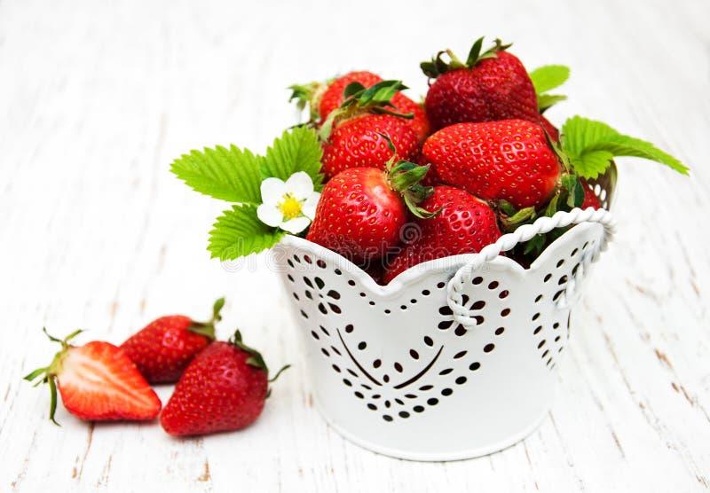 在金属罐的草莓 免版税库存图片