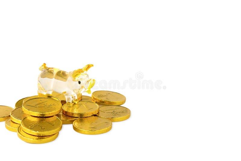 在金币的猪 库存图片