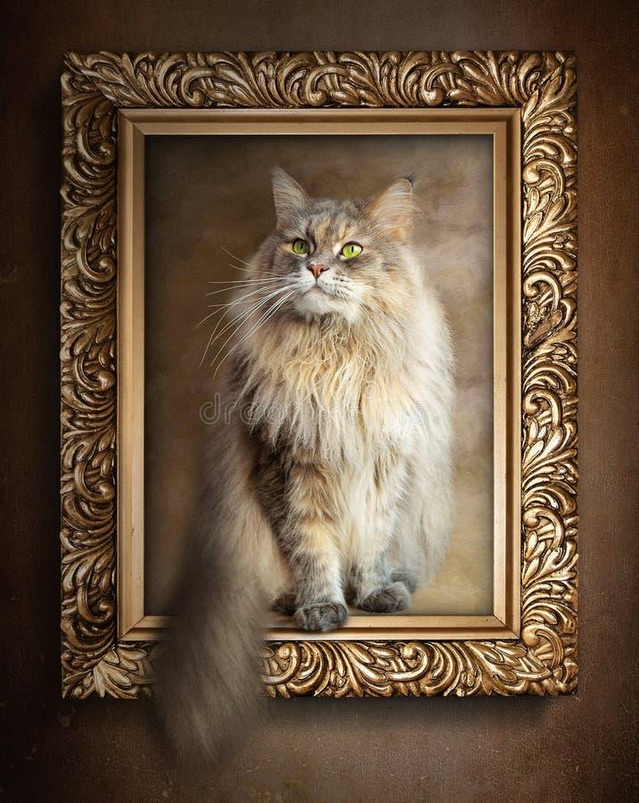 在金框架的坐的猫 免版税库存照片