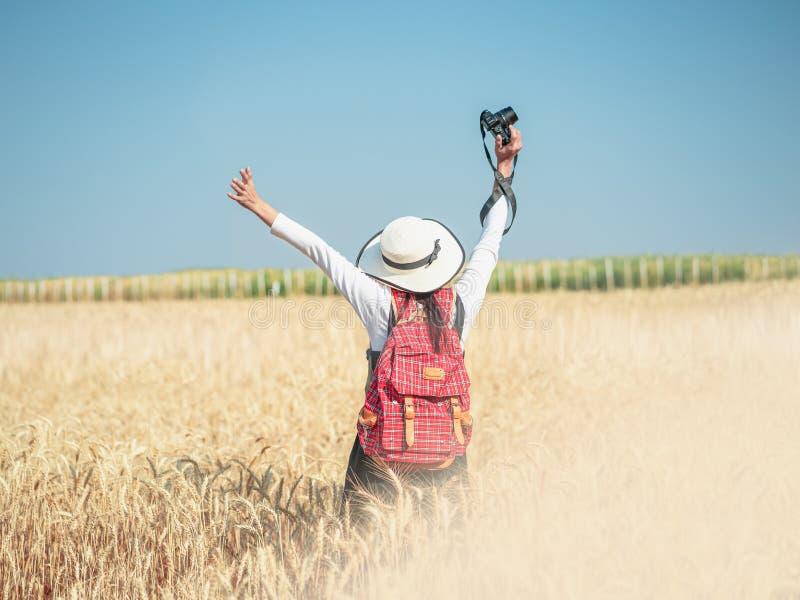 在金麦田站立抬起相机的女人 库存图片