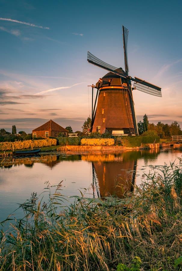 在金黄小时,沿一条河的荷兰风车 免版税图库摄影