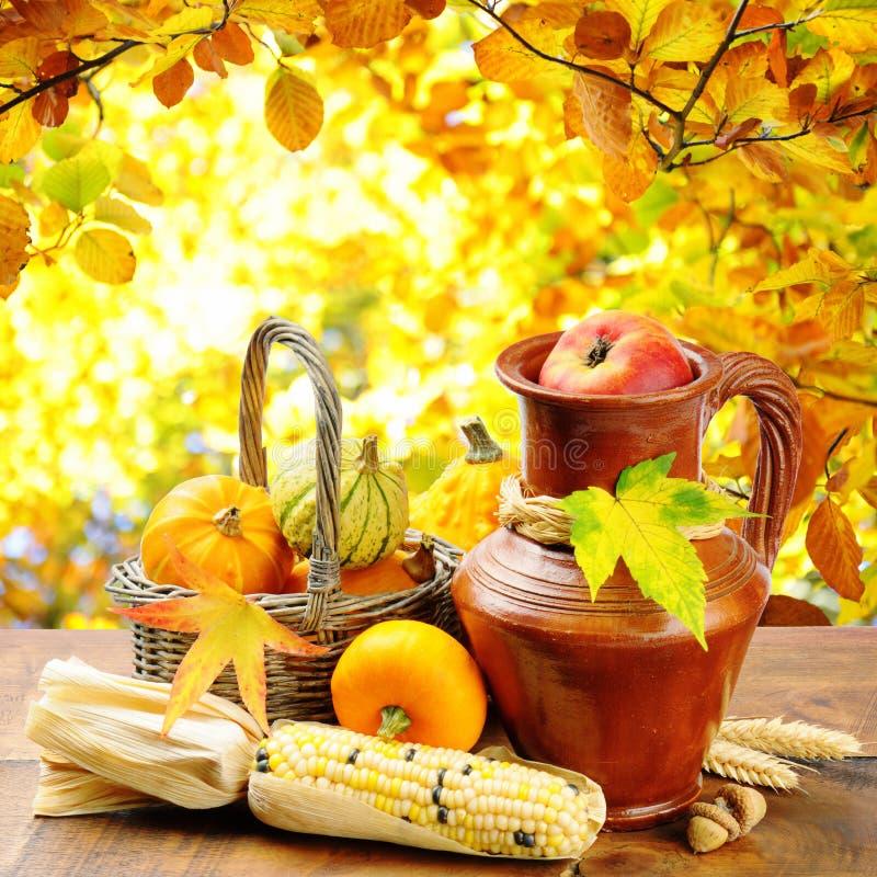 在金黄森林背景的秋天蔬菜 库存图片