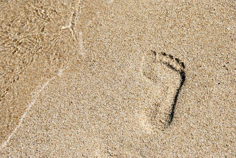 在金黄沙子的脚印 库存照片