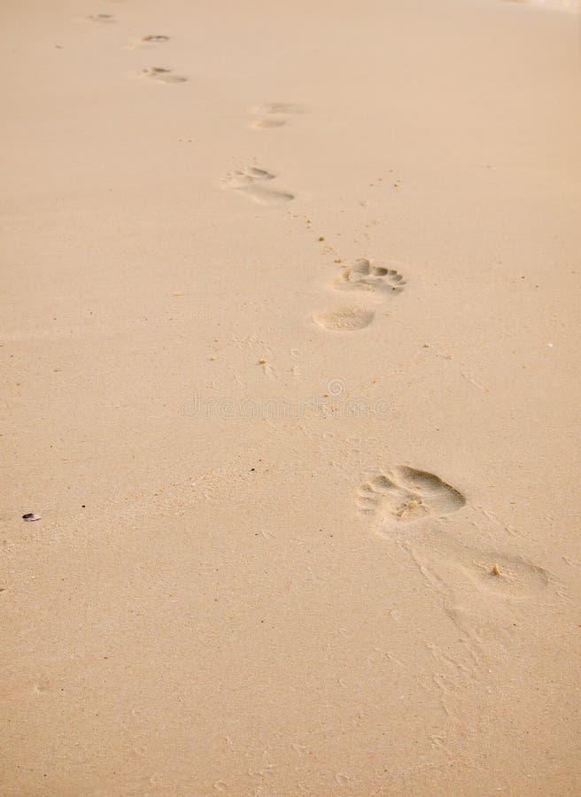 在金黄沙子的脚印 免版税库存照片