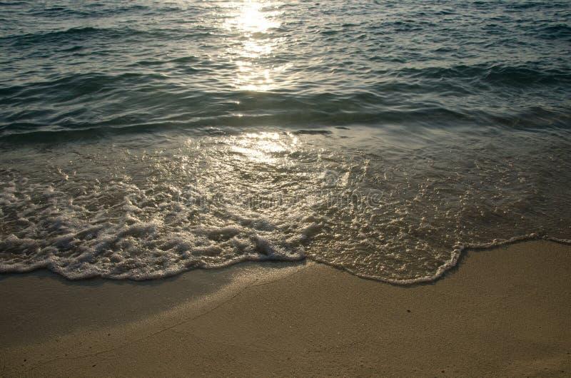 在金黄海滩沙子的发光的热带海波浪在日落光, lipe 免版税库存图片
