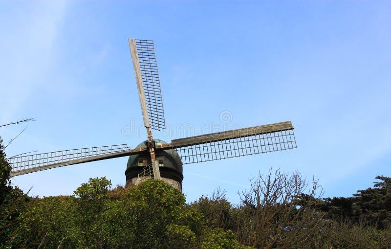 在金洲公园的风车 库存图片