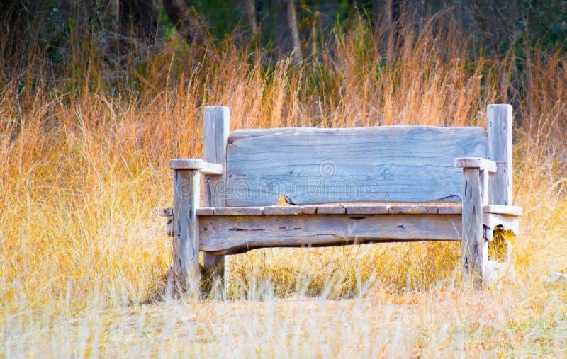 在金黄大网茅草的被风化的长木凳 库存图片