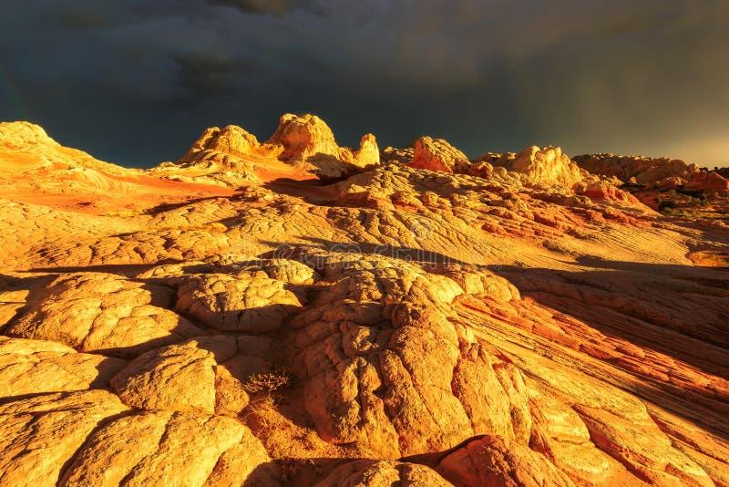 在金黄日落的独特的岩层白色口袋,亚利桑那 免版税库存照片