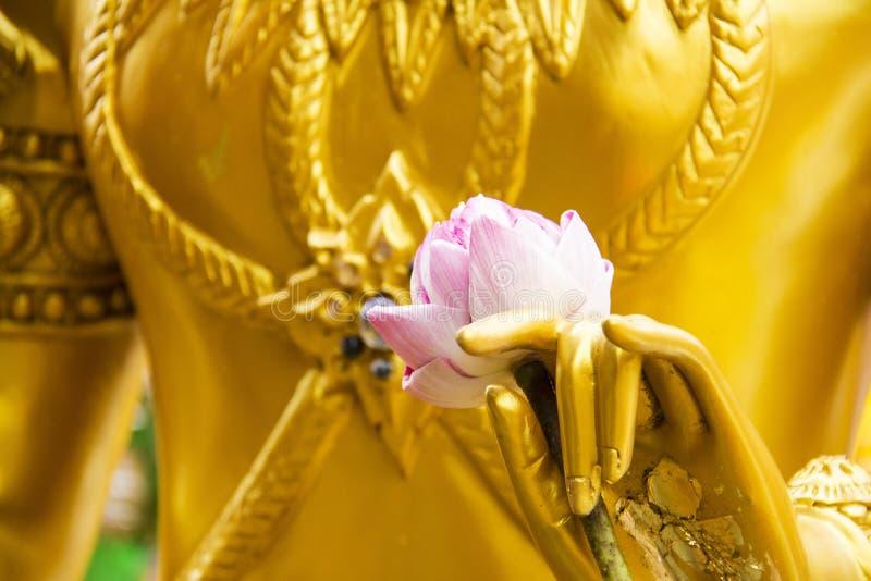 在金黄雕象的手上的桃红色莲花 图库摄影