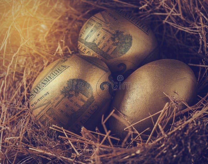 在金黄鸡蛋的美元与巢,财富概念 免版税库存照片