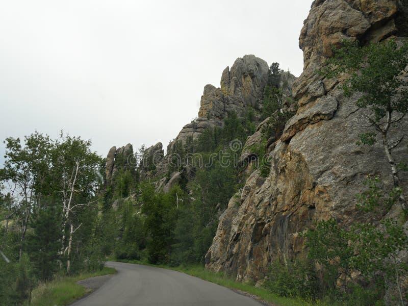 在针高速公路,Custer国家公园,南达科他的风景驱动 免版税库存照片