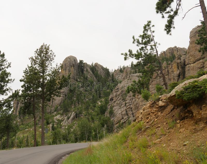 在针高速公路,Custer国家公园,南达科他的风景驱动 免版税库存图片