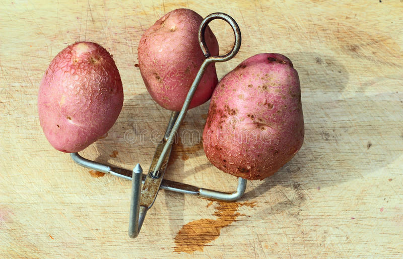 在钉的被烘烤的带皮烤的土豆。 库存照片