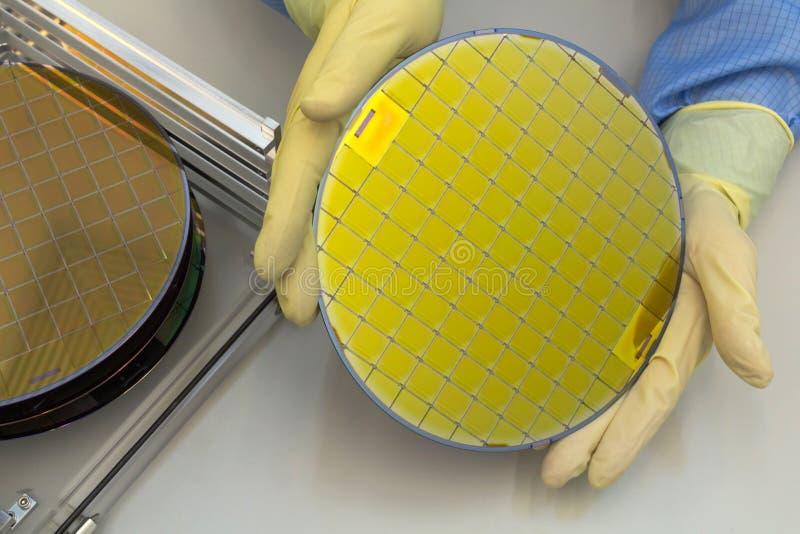 在钢持有人箱子的硅片去掉用手在手套薄酥饼是一个薄片半导体材料,这样 图库摄影