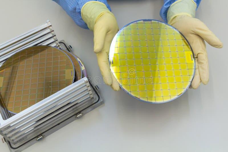 在钢持有人箱子的硅片去掉用手在手套薄酥饼是一个薄片半导体材料,这样 免版税图库摄影