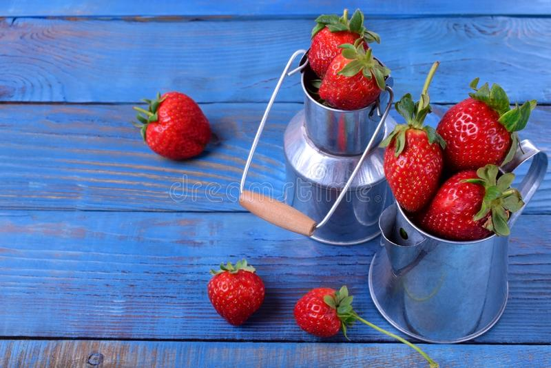 在铁罐头的新鲜的成熟草莓 库存照片