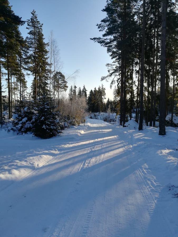 在铁路路附近的城市发光雪星期日对冬天木头 图库摄影