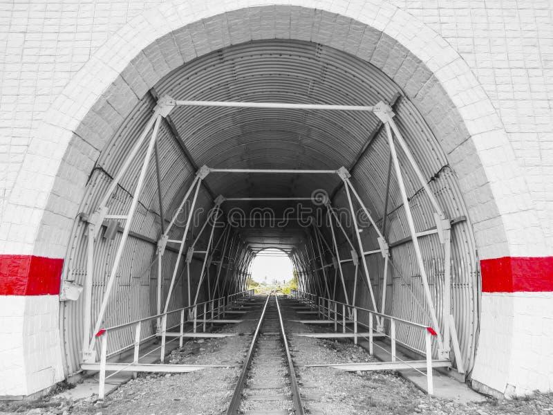 在铁路轨道的隧道 免版税图库摄影