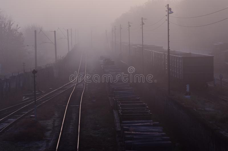 在铁轨的货车在早晨雾 库存图片
