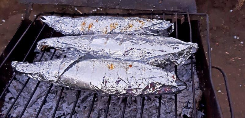 在铝芯的烤鱼 E 免版税库存照片