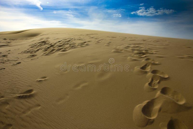 在银色湖沙丘的脚标记  图库摄影