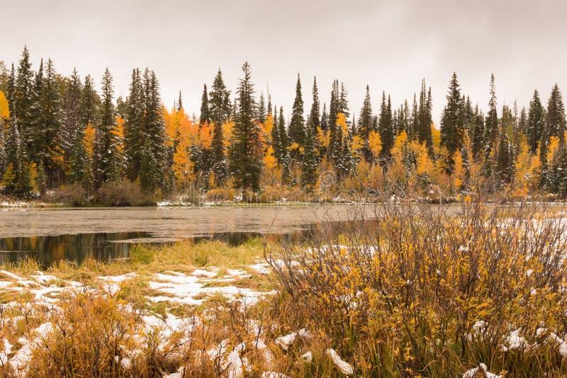 在银色湖的秋天 库存图片