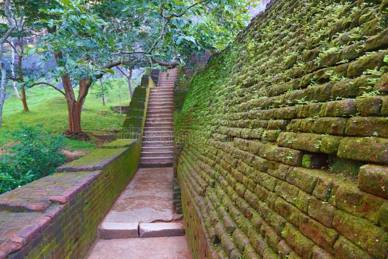在锡吉里耶狮子城堡的楼梯 免版税图库摄影