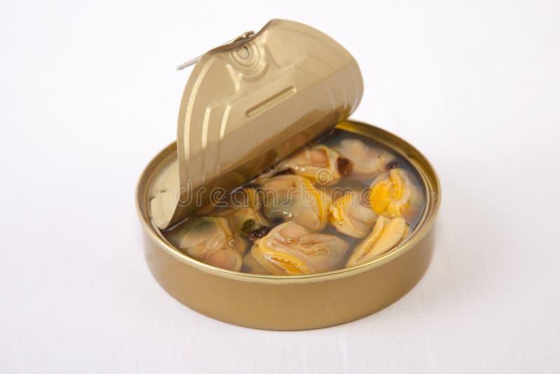 在锡罐的智利蛤蜊 免版税库存照片