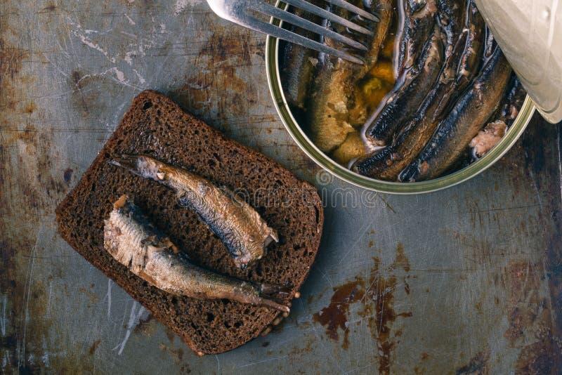 在锡罐的罐装西鲱用黑麦面包 在土气背景 图库摄影