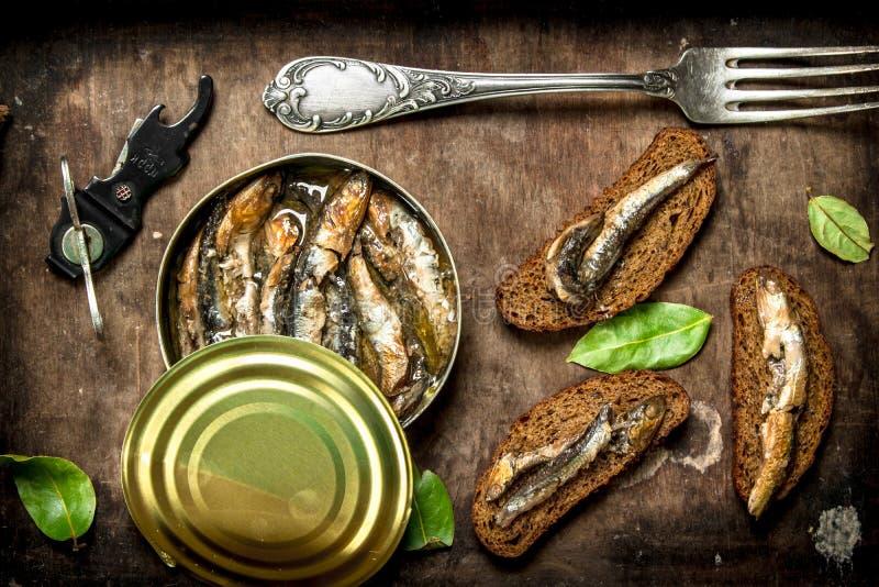 在锡罐的罐装西鲱用黑麦面包 免版税库存图片