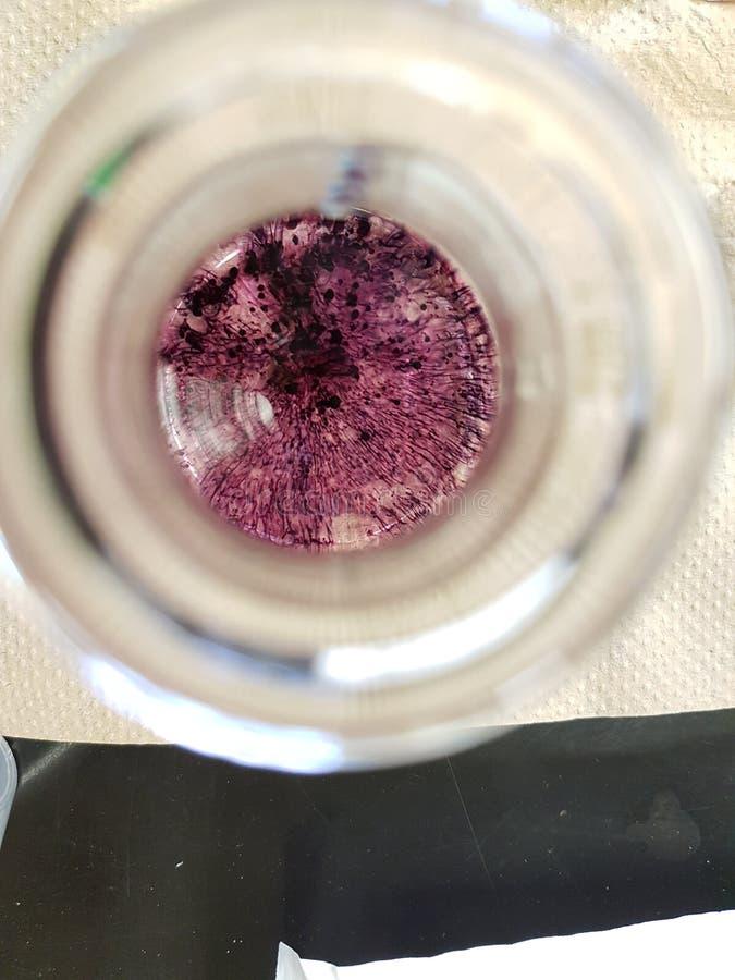 在锥形烧瓶的化学滴定法 免版税图库摄影