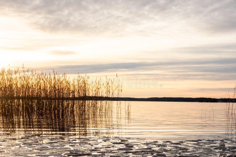 在镇静湖水与冰川和芦苇的美好的橙色冬天风景日落反对海天线 库存图片