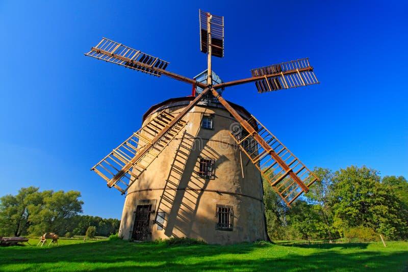 在镇Krasna Lipa,捷克附近的历史风车Svetlik 与风车和深蓝天空的美好的风景 绿色结构树 库存图片