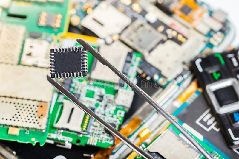 在镊子的电子芯片 免版税库存图片