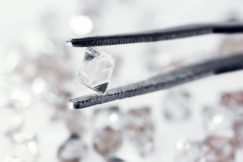 在镊子的自然透明金刚石 免版税库存图片