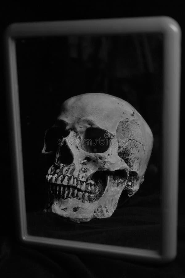 在镜子的人的头骨 免版税库存图片