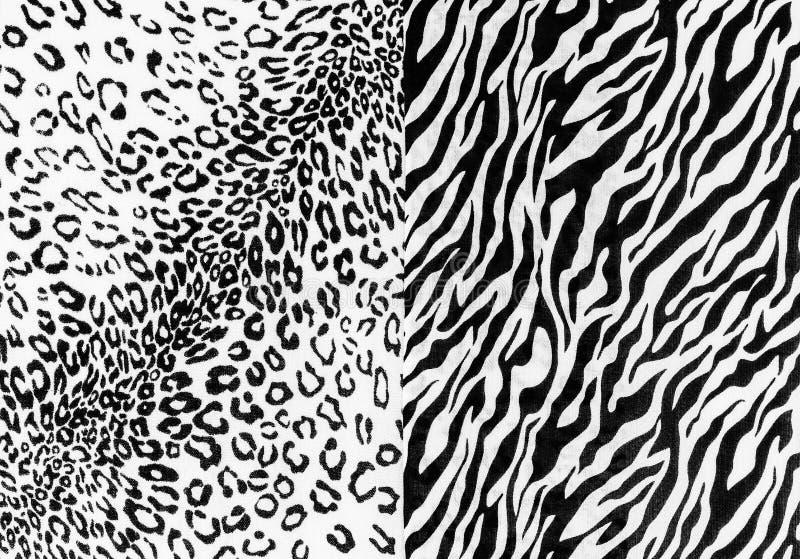 在镶边豹子和斑马的织品 库存照片