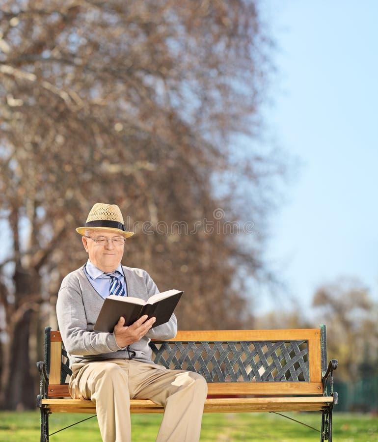 在长凳和阅读书的资深开会在公园 免版税库存图片