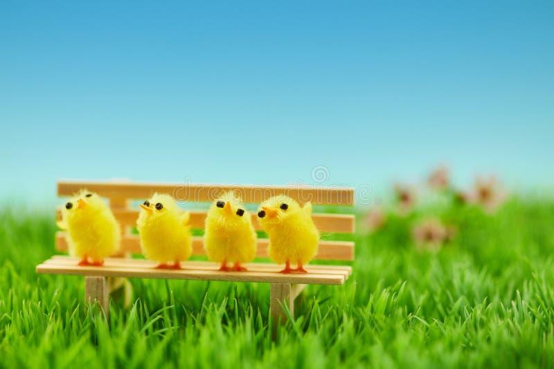 在长凳的小鸡家庭当复活节装饰 免版税库存照片