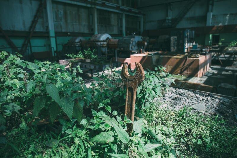在长得太大的生锈的扳手与草本和植物在一家大被放弃的工厂 免版税库存图片
