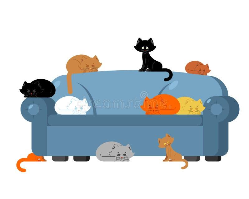 在长沙发的许多猫 在沙发的小猫 家具猫夫人 皇族释放例证