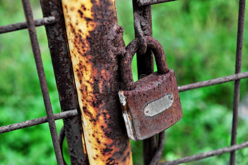 在门的生锈的闭合的锁 库存图片
