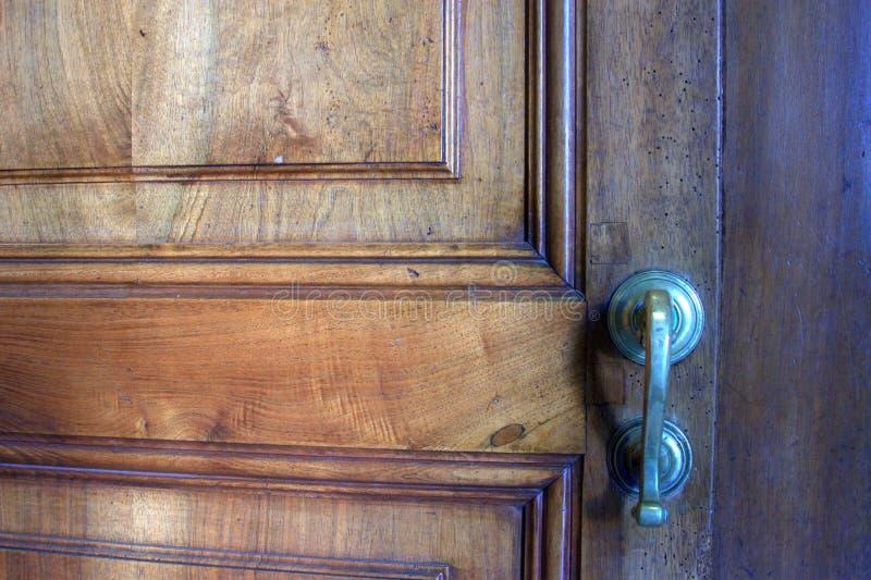 在门的蚀船虫 库存照片