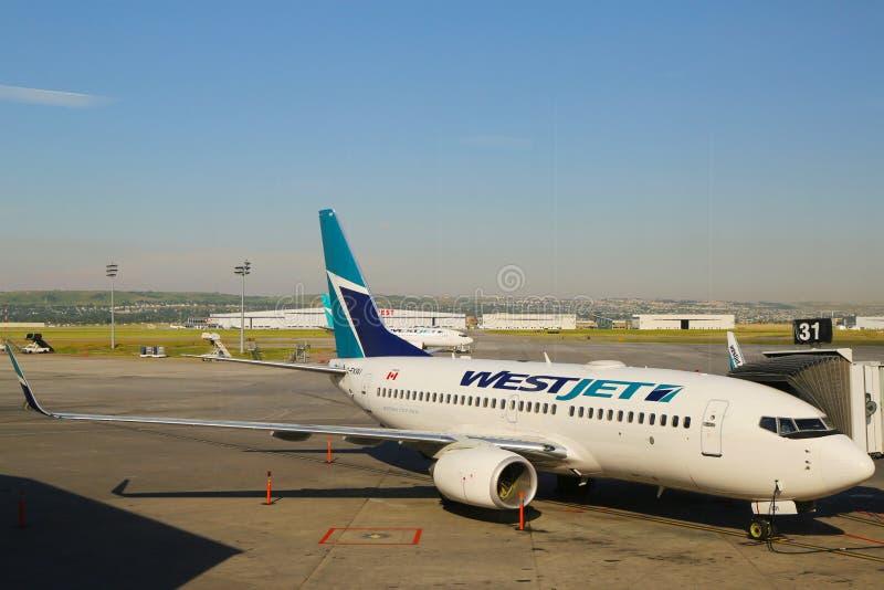 在门的WestJet航空器在卡尔加里国际机场 免版税库存图片
